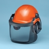 Logger Helmets & Systems
